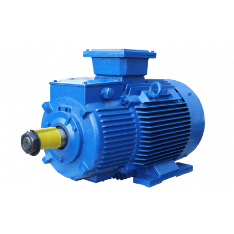 MTH200LB8 электродвигатель 22 кВт 750 об/мин 380В крановый с фазным ротором