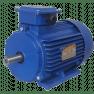 5АИ63B6 электродвигатель 0.25 кВт 1000 об/мин (трехфазный 220/380) Элком Китай