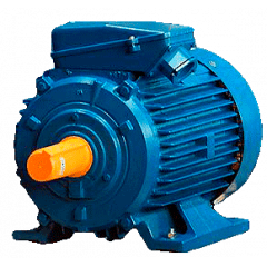 А280S8 электродвигатель 55 кВт 735 об/мин (трехфазный 380/660) ЭЛДИН Россия