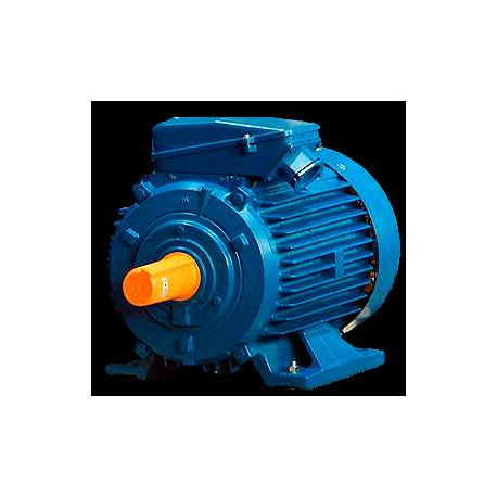 А355МLА12 электродвигатель 110 кВт 493 об/мин (трехфазный 380/660) ЭЛДИН Россия