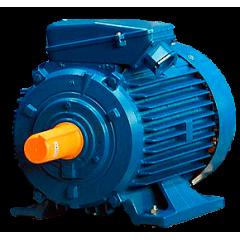 А132S6 электродвигатель 5.5 кВт 955 об/мин (трехфазный 220/380) ЭЛДИН Россия