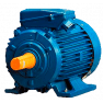 А355MLB12 электродвигатель 132 кВт 493 об/мин (трехфазный 380/660) ЭЛДИН Россия