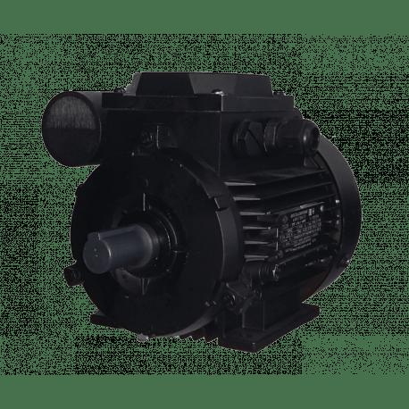 AИРЕ63В2 электродвигатель 0.37 кВт 3000 об/мин (однофазный 220) Могилев Беларусь